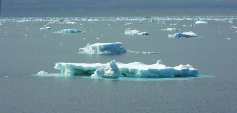 Icebergs en la Antártida.