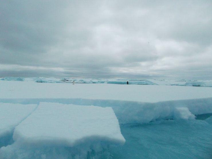 Weddell_Sea