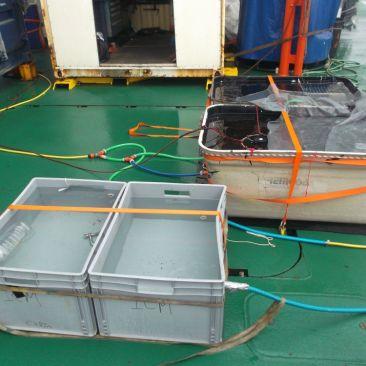 Experimentos en la cubierta del BIO Hespérides.