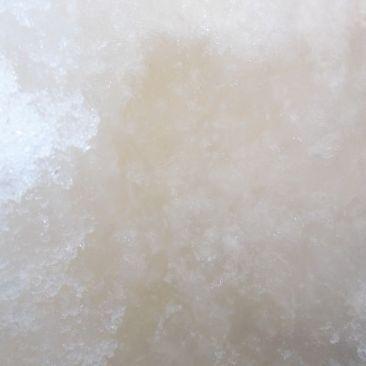 Hielo antártico con microalgas.