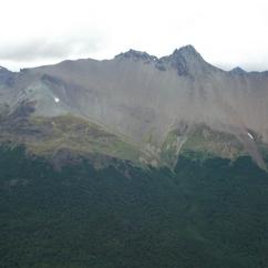 Gradiente altitudinal de vegetación - El Bosque magallánico acaba a los 450 msnm