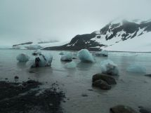 Glaciar Johnsons.