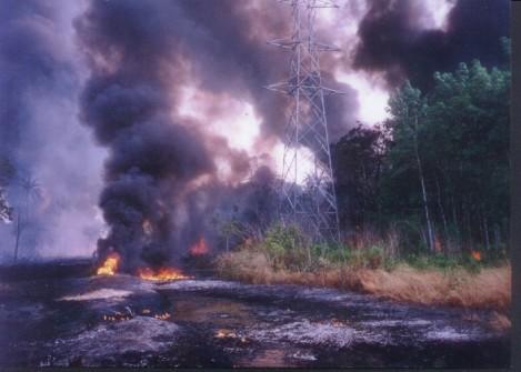 La empresa en conflicto es la holandesa Royal Dutch Shell, por las actividades de su subsidiarias en Nigeria, en particular las de la empresa Shell Petroleum Development Company of Nigeria Limited (Fuente: EJatlas).