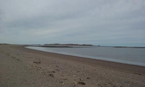 Paisaje costero cerca de la población de Camarones, a unos 400 km al sur de Puerto Madryn.