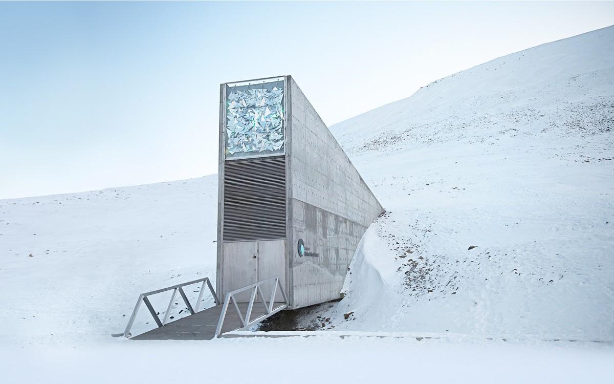 Las semillas congeladas del Ártico: Svalbard