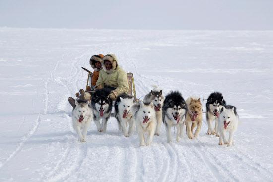 Inuit hunter, Nunavut, Canada. Crédito: Bryan & Cherry Alexander Photography / ArcticPhoto.