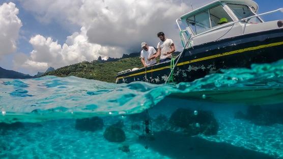 Lanzando el radiómetro en una zona adyacente a los arrecifes de coral de Piha'ena (Mo'orea).